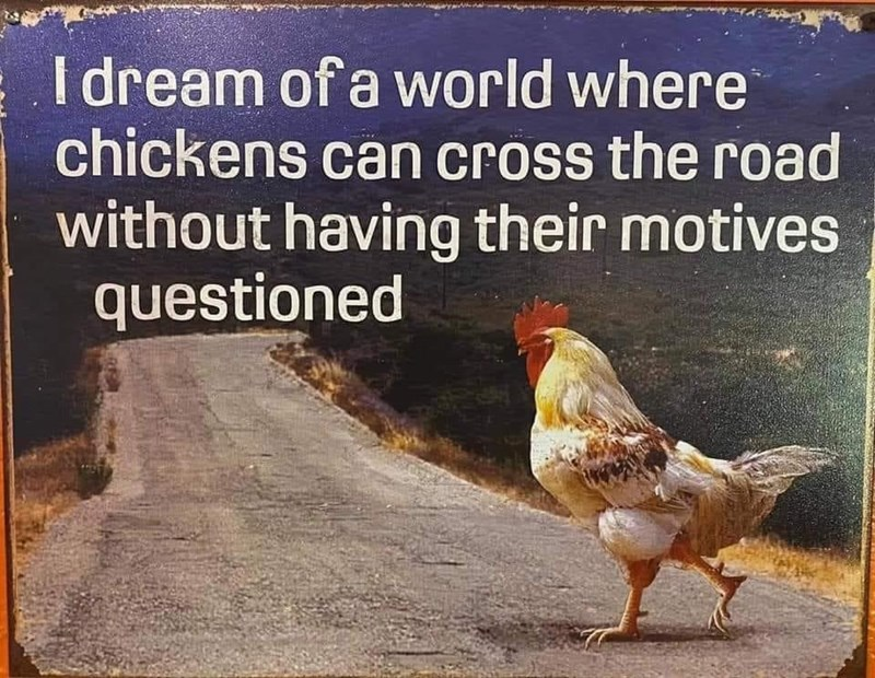 Bird - I dream of a world where chickens can cross the road without having their motives questioned