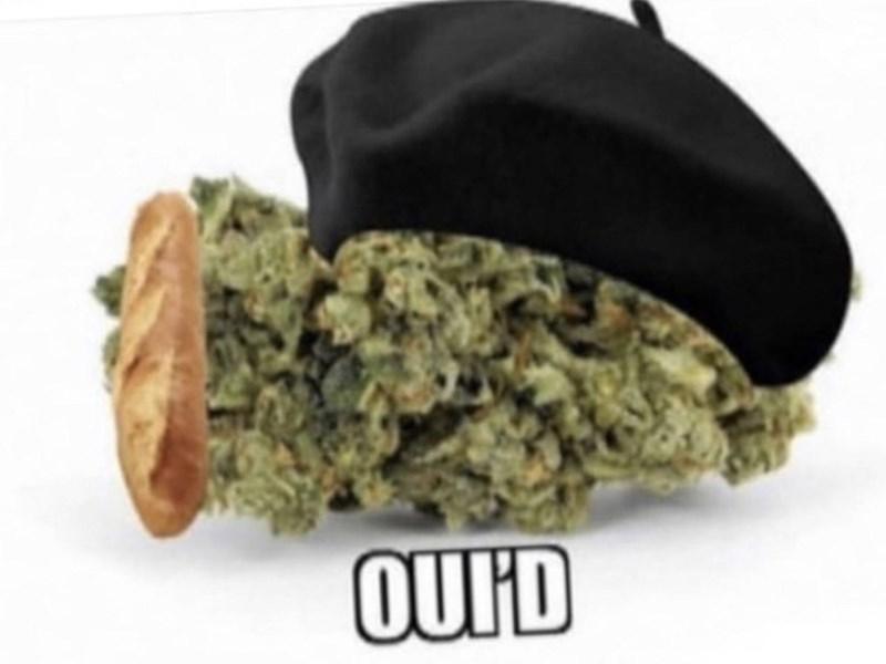 Food - OUID