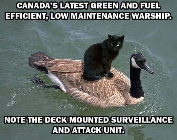 Water - CANADA'S LATEST GREEN AND FUEL EFFICIENT, LOW MAINTENANCE WARSHIP. NOTE THE DECK MOUNTED SURVEILLANCE AND ATTACK UNIT.