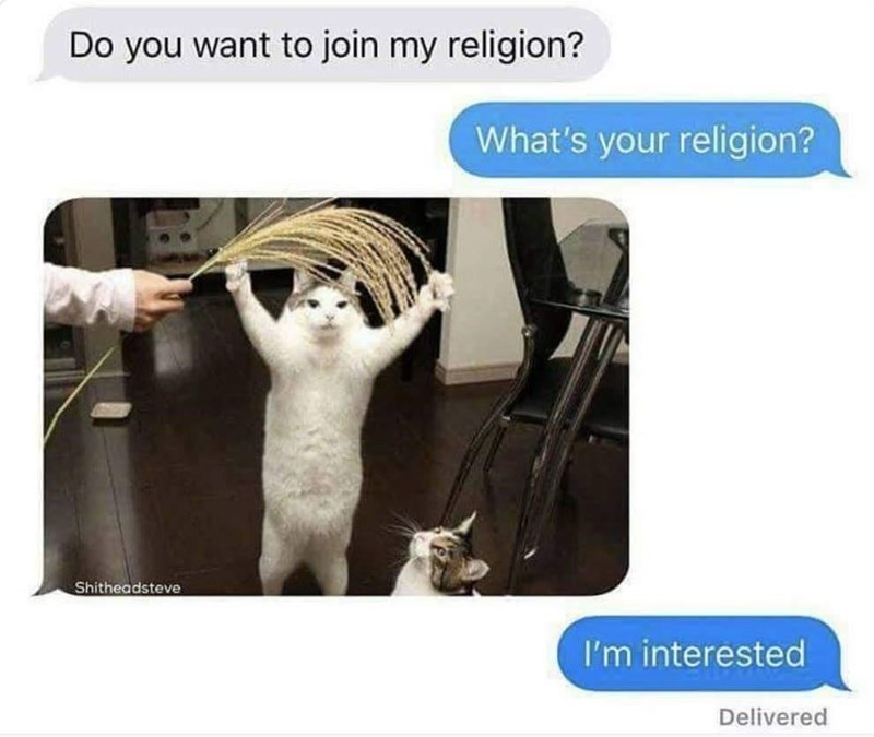 Product - Do you want to join my religion? What's your religion? Shitheadsteve I'm interested Delivered