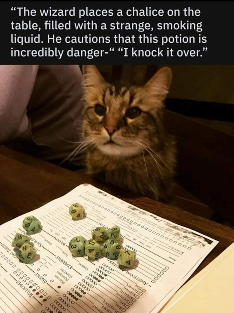 """Cat - ---- 0 """"The wizard places a chalice on the table, filled with a strange, smoking liquid. He cautions that this potion is incredibly danger-"""" """"I knock it over."""" 00 000 00000 0000 LMIT TRICGER- 700000 O0000000 00 00000 оооо WILLPOWER - Toru WEIPONS- 00000 00000 PERIPHERAL COMeITTED 000 00000 00000 00000 00000 EN O0000 O0000 00000 O0000 OSOCIALIZE OSTEALTH OSURVIVAL OTHROWN OWAR -ADDITIONAL ABLITIES- NESENCE RESISTANCE MANCE 00000 ORIDE NATORN"""