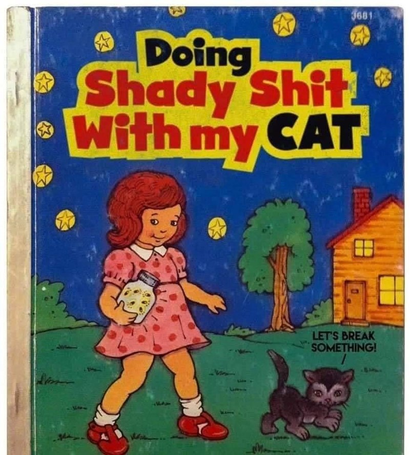 Book - 3681 Doing Shady Shit With my CAT 田 LET'S BREAK SOMETHING!