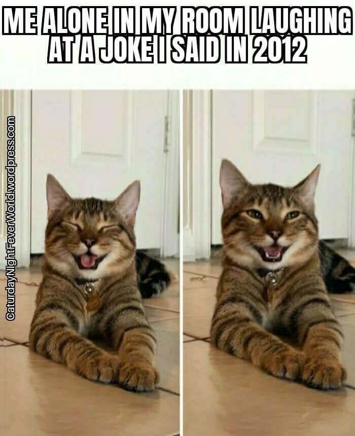Cat - ME ALONE IN MY ROOM LAUGHING ATAJOKE ISAID IN 2012 CaturdayNightFeverWorld.wordpress.com