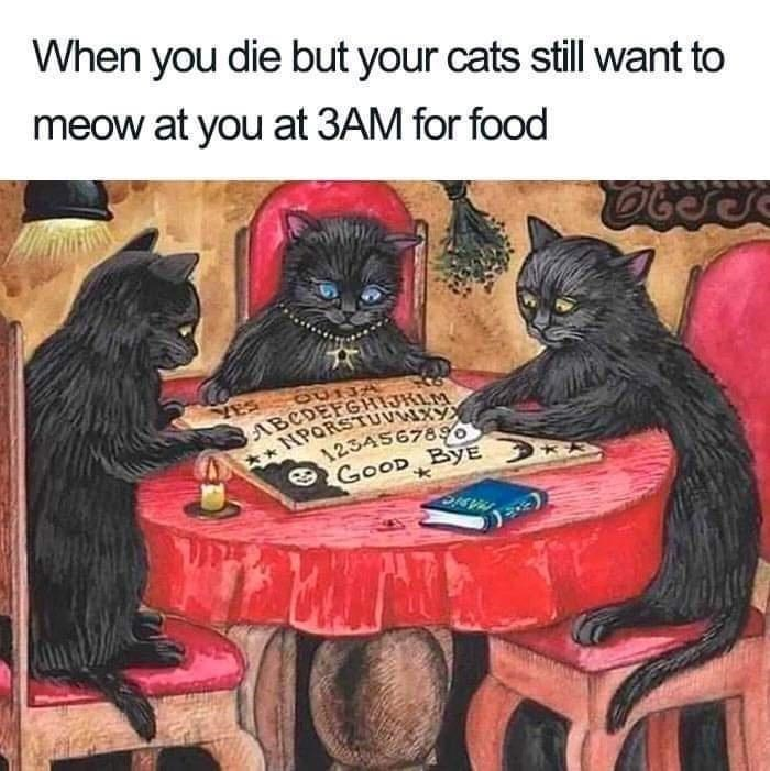 Furniture - When you die but your cats still want to meow at you at 3AM for food OU13 ABCDEFGHIJKLM TNPORSTUVWIXY 1234567896 GOOD BYE