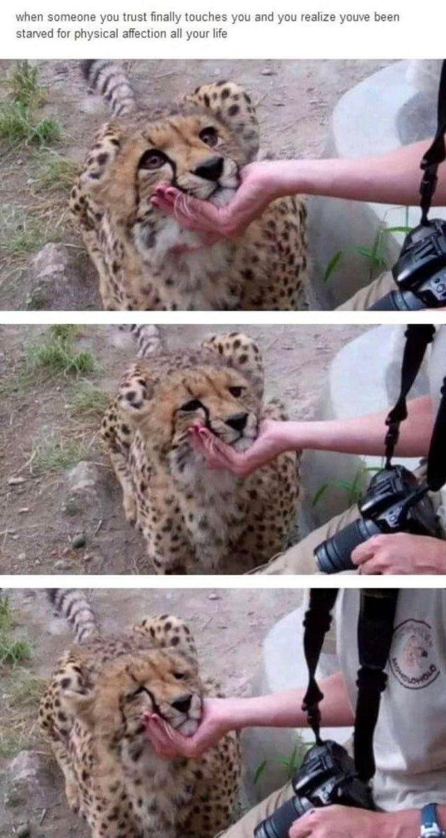 Photograph - when someone you trust finally touches you and you realize youve been starved for physical affection all your life