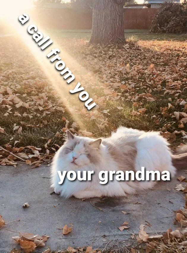 Plant - your grandma a call from you