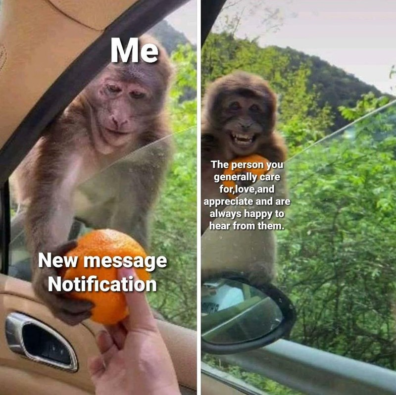 Primate - Me The person you generally care for,love, and appreciate and are always happy to hear from them. New message Notification