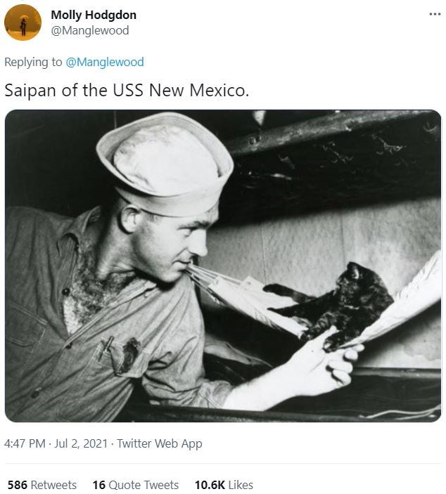 Font - Molly Hodgdon @Manglewood ... Replying to @Manglewood Saipan of the USS New Mexico. 4:47 PM Jul 2, 2021 Twitter Web App 586 Retweets 16 Quote Tweets 10.6K Likes