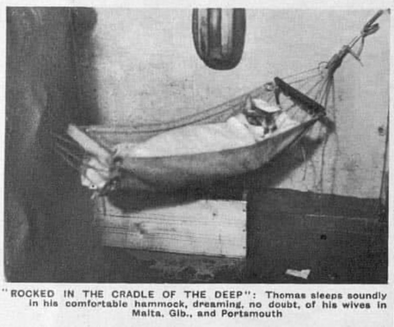 """Boat - ROCKED IN THE CRADLE OF THE DEEP"""": Thomas sleeps soundly In his comfortable hammock, dreaming, no doubt, of his wives in Malta. Gib., and Portamouth"""