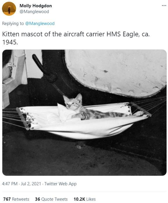 Felidae - Molly Hodgdon @Manglewood ... Replying to @Manglewood Kitten mascot of the aircraft carrier HMS Eagle, ca. 1945. 4:47 PM Jul 2, 2021 · Twitter Web App 767 Retweets 36 Quote Tweets 10.2K Likes