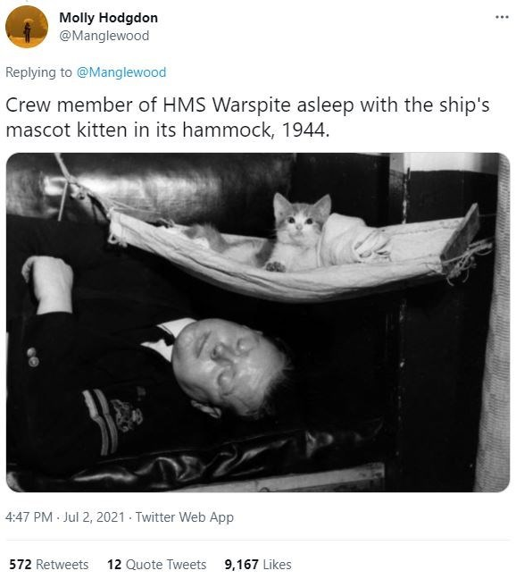 Smile - Molly Hodgdon @Manglewood ... Replying to @Manglewood Crew member of HMS Warspite asleep with the ship's mascot kitten in its hammock, 1944. 4:47 PM Jul 2, 2021 - Twitter Web App 572 Retweets 12 Quote Tweets 9,167 Likes