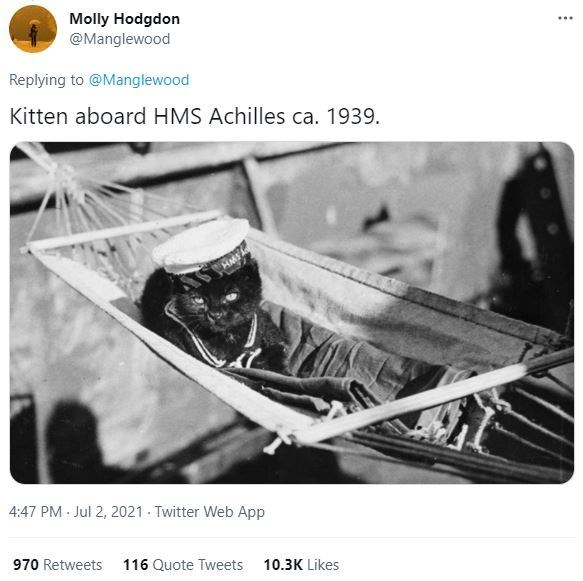 Motor vehicle - Molly Hodgdon @Manglewood ... Replying to @Manglewood Kitten aboard HMS Achilles ca. 1939. HMS 4:47 PM Jul 2, 2021 - Twitter Web App 970 Retweets 116 Quote Tweets 10.3K Likes