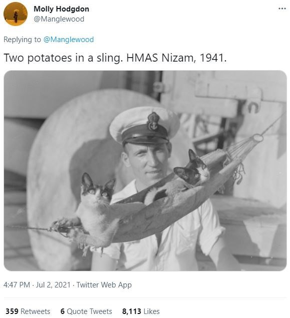 Gesture - Molly Hodgdon @Manglewood ... Replying to @Manglewood Two potatoes in a sling. HMAS Nizam, 1941. 4:47 PM - Jul 2, 2021 - Twitter Web App 359 Retweets 6 Quote Tweets 8,113 Likes