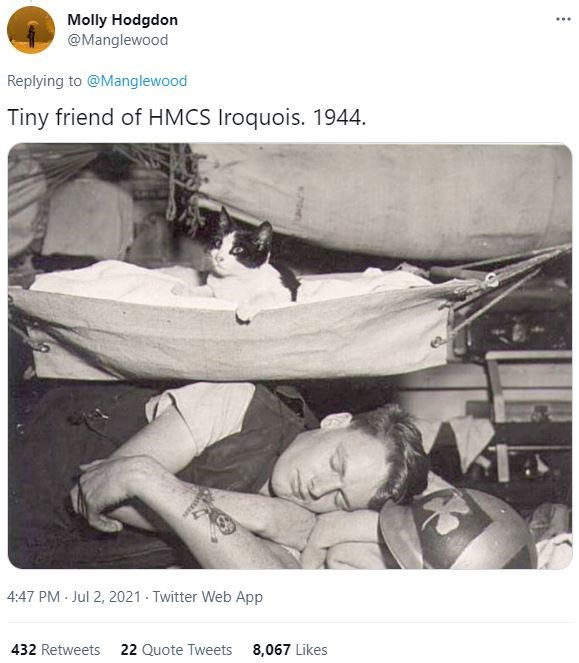 Motor vehicle - Molly Hodgdon @Manglewood ... Replying to @Manglewood Tiny friend of HMCS Iroquois. 1944. 4:47 PM Jul 2, 2021 Twitter Web App 432 Retweets 22 Quote Tweets 8,067 Likes