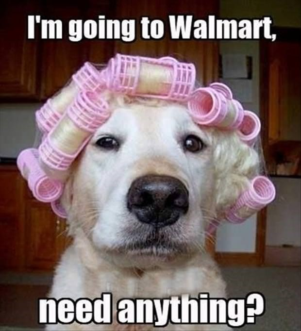 Nose - I'm going to Walmart, need anything?