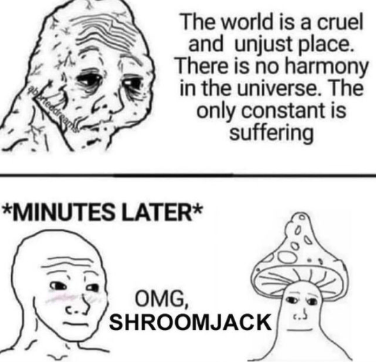 Hair - The world is a cruel and unjust place. There is no harmony in the universe. The only constant is suffering berteedrear *MINUTES LATER* OMG, SHROOMJACK