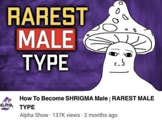 Gesture - RAREST MALE TYPE How To Become SHRIGMA Male   RAREST MALE ALPHA ΤΥΡΕ Alpha Show 137K views · 2 months ago