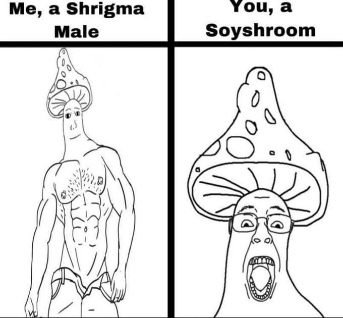 Head - Me, a Shrigma You, a Male Soyshroom