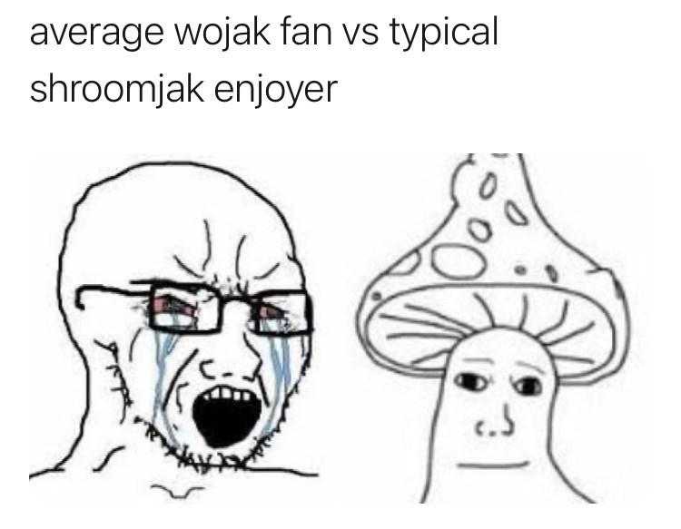 Nose - average wojak fan vs typical shroomjak enjoyer