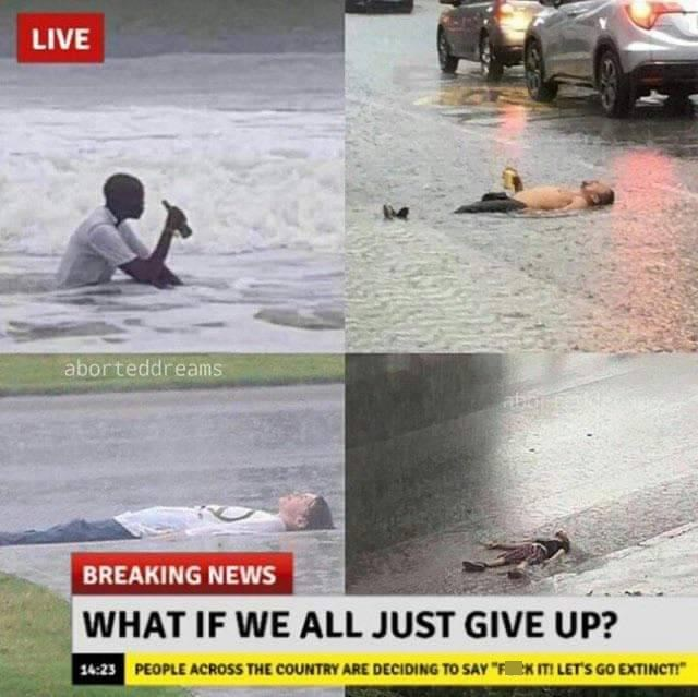 """Water - LIVE aborteddreams BREAKING NEWS WHAT IF WE ALL JUST GIVE UP? 14:23 PEOPLE ACROSS THE COUNTRY ARE DECIDING TO SAY """"FK ITI LET'S GO EXTINCTI"""""""