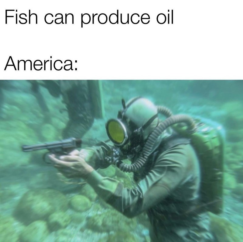 Organism - Fish can produce oil America:
