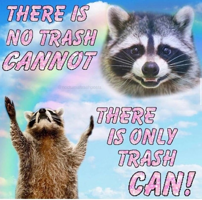 Photograph - THERE IS NO TRASH CANNOT @nocturnaltrashposts THERE IS ONLY TRASH CAN!