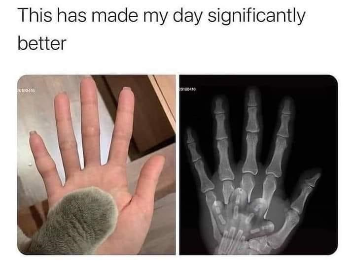 Hand - This has made my day significantly better