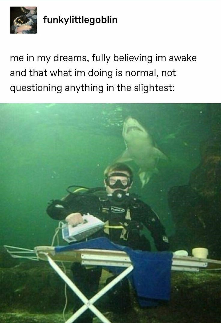 Underwater diving - funkylittlegoblin me in my dreams, fully believing im awake and that what im doing is normal, not questioning anything in the slightest: