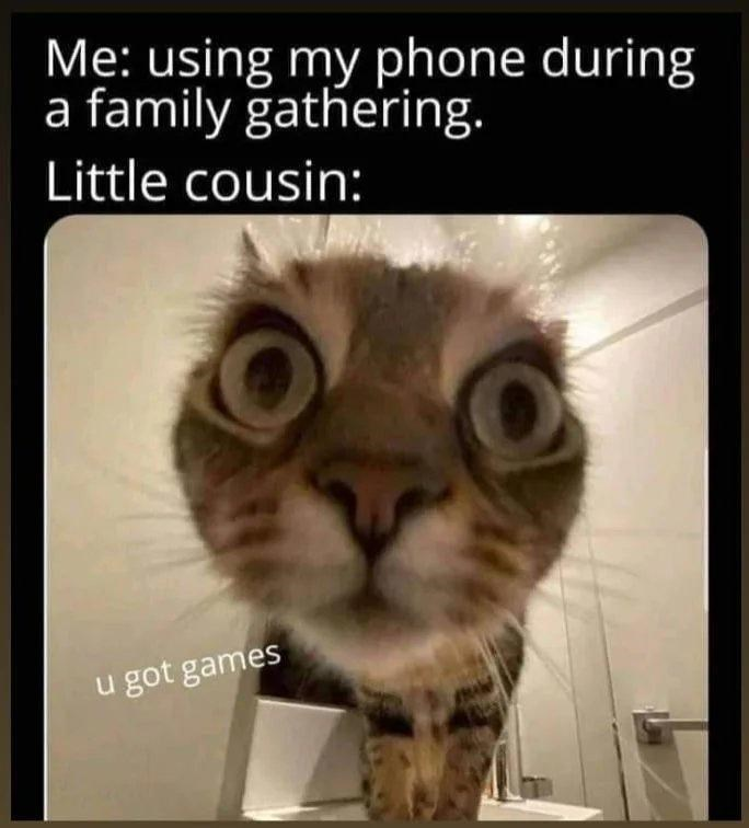 Cat - Me: using my phone during family gathering. Little cousin: u got games