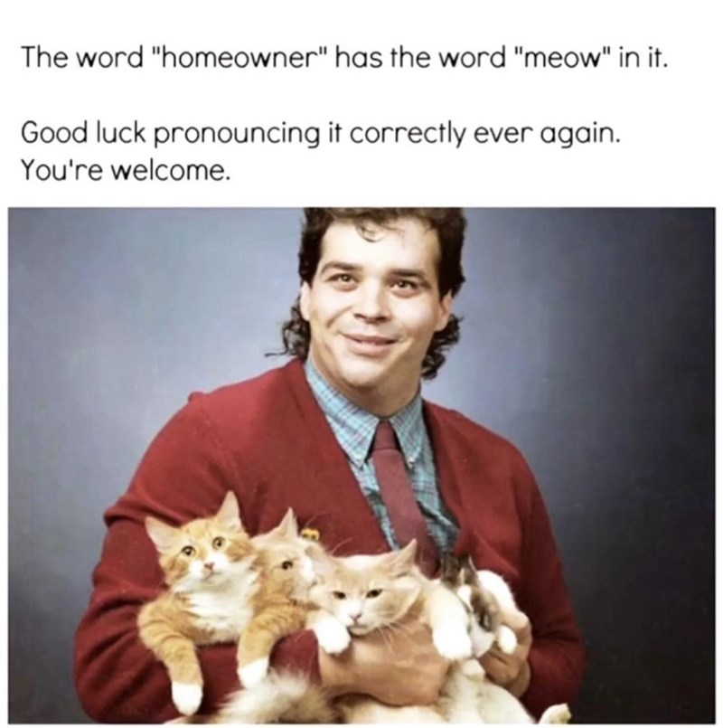 """Smile - The word """"homeowner"""" has the word """"meow"""" in it. Good luck pronouncing it correctly ever again. You're welcome."""