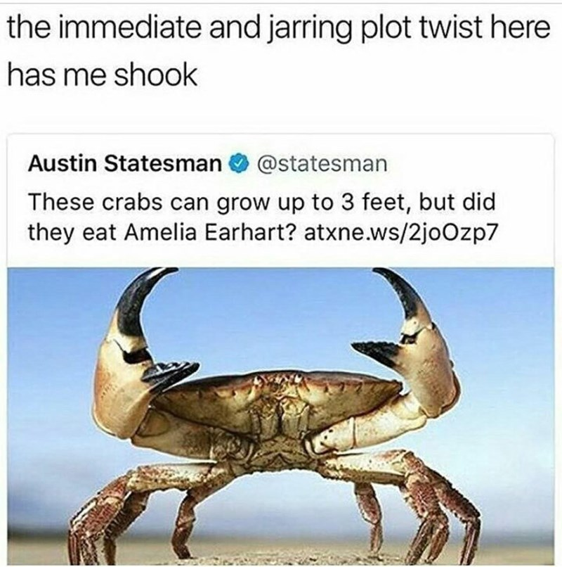 Organism - the immediate and jarring plot twist here has me shook Austin Statesman @statesman These crabs can grow up to 3 feet, but did they eat Amelia Earhart? atxne.ws/2joOzp7