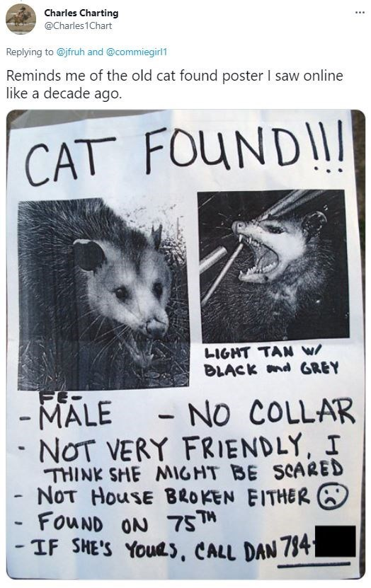 Vertebrate - Charles Charting ... @Charles1Chart Replying to @jfruh and @commiegirl1 Reminds me of the old cat found poster I saw online like a decade ago. CAT FOUND!I LIGHT TAN W/ BLACK nd GREY FE- - MALE NOT VERY FRIENDLY, I THINK SHE MIGHT BE SCARED NOT HouSE BROKEN EITHER O FOUND ON 75™ - IF SHE'S YoUes, CALL DAN 784L E - NO COLLAR