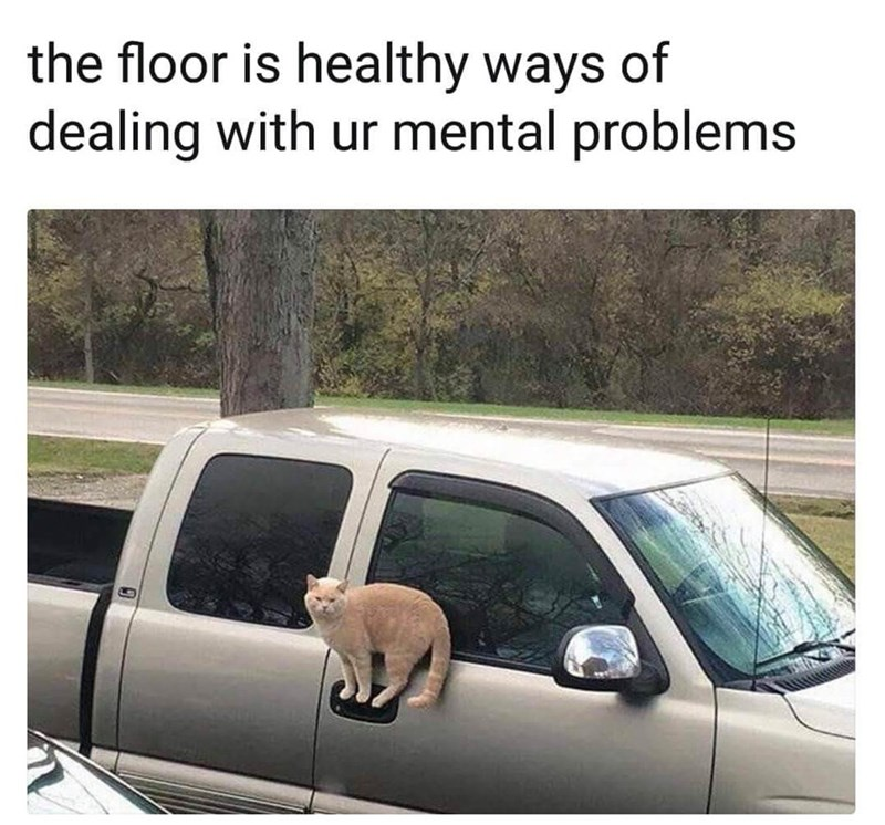 Land vehicle - the floor is healthy ways of dealing with ur mental problems