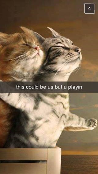 Cat - 4 this could be us but u playin