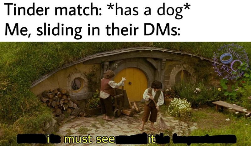 Plant community - Tinder match: *has a dog* Me, sliding in their DMs: SHIRE FOLK it must see