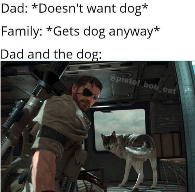 Motor vehicle - Dad: *Doesn't want dog* Family: *Gets dog anyway* Dad and the dog: @pistol bob_cat E-52 3
