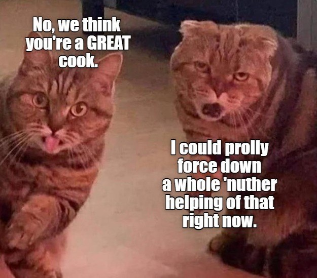 Cat - No, we think you're a GREAT cook. I could prolly force down a whole 'nuther helping of that right now.