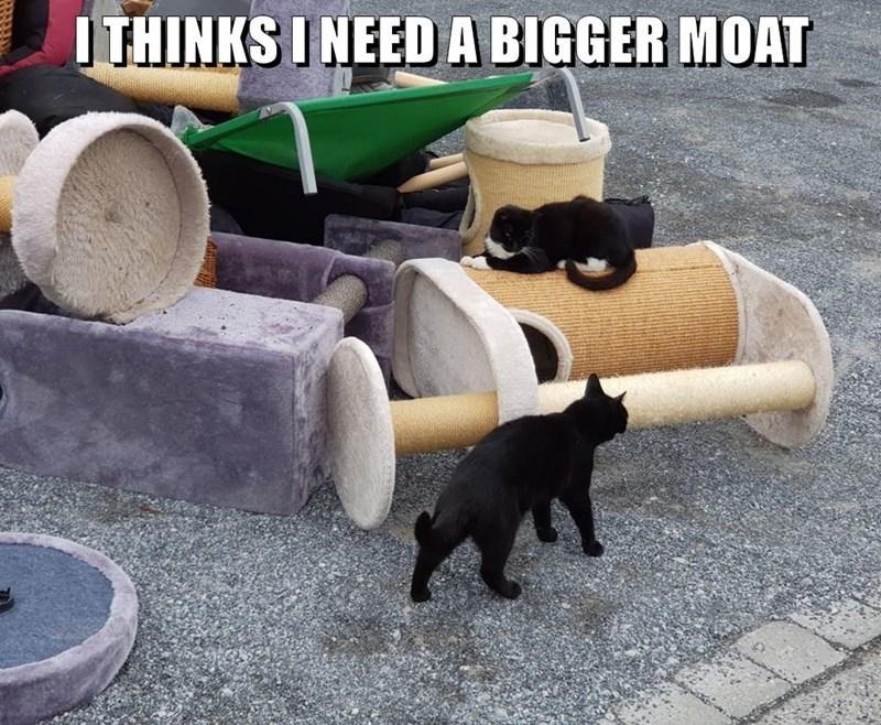Automotive tire - I THINKS I NEEDA BIGGER MOAT