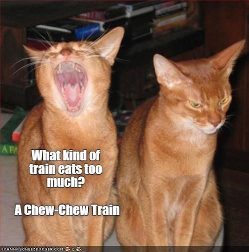 Head - A FA What kind of train eats too much? A Chew-Chew Train ICANHASCHEEZEURGER.COM