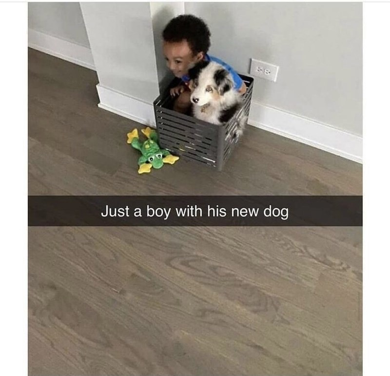 Wood - Just a boy with his new dog