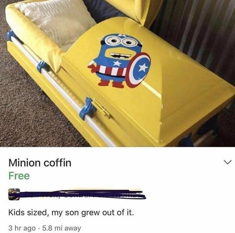 Shipping box - Minion coffin Free Kids sized, my son grew out of it. 3 hr ago · 5.8 mi away