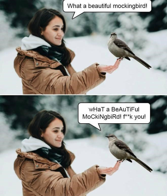 Clothing - What a beautiful mockingbird! WHat a BeAuTiFul MoCkiNgbiRd! f**k you!
