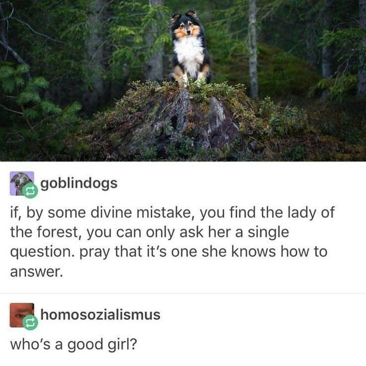 Plant - goblindogs if, by some divine mistake, you find the lady of the forest, you can only ask her a single question. pray that it's one she knows how to answer. homosozialismus who's a good girl?