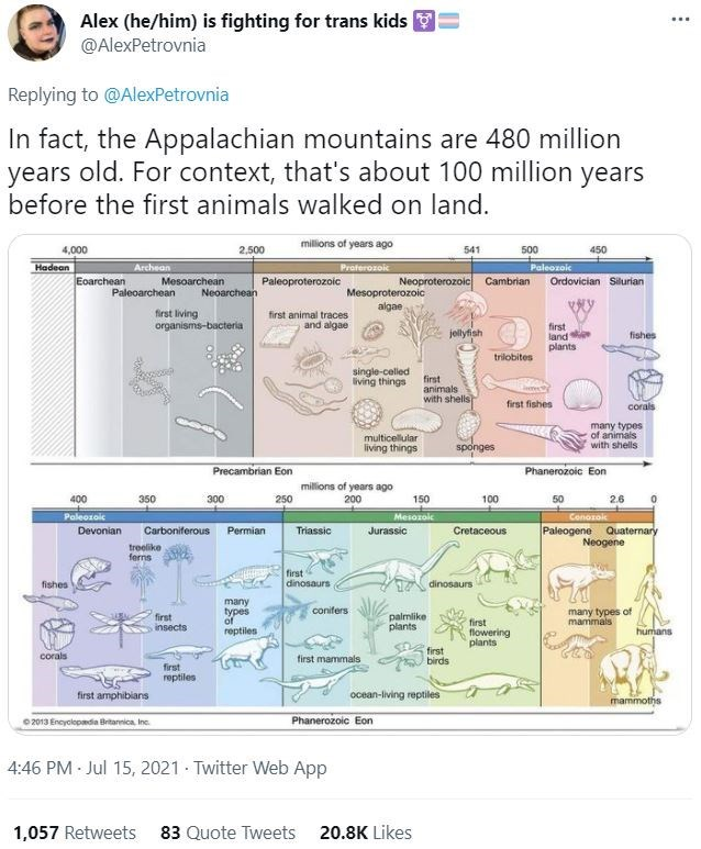 Font - Alex (he/him) is fighting for trans kids @AlexPetrovnia ... Replying to @AlexPetrovnia In fact, the Appalachian mountains are 480 million years old. For context, that's about 100 million years before the first animals walked on land. millions of years ago 4,000 2.500 541 500 450 Hadean Archean Proferozoic Paleozoic Eoarchean Mesoarchean Paleoproterozoic Neoproterozoic Cambrian Ordovician Silurian Mesoproterozoic algne Paleoarchean Neoarchean first living organisms-bacteria first animal tr