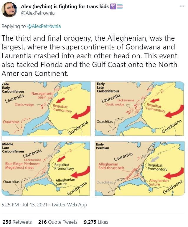Map - Alex (he/him) is fighting for trans kids @AlexPetrovnia ... Replying to @AlexPetrovnia The third and final orogeny, the Alleghenian, was the largest, where the supercontinents of Gondwana and Laurentia crashed into each other head on. This event also tacked Florida and the Gulf Coast onto the North American Continent. Late Early Carboniferous Early Late Narragansett basin Carboniferous Laurentia Laurentia Lackawanna Clastic wedge Reguibat Promontory Clastic wedge Reguibat Promontory Ouachi