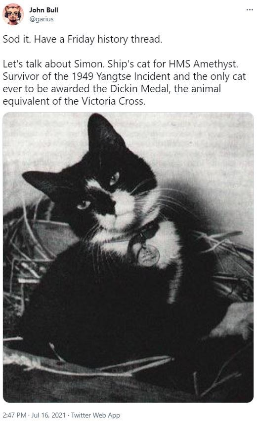 Cat - John Bull ... @garius Sod it. Have a Friday history thread. Let's talk about Simon. Ship's cat for HMS Amethyst. Survivor of the 1949 Yangtse Incident and the only cat ever to be awarded the Dickin Medal, the animal equivalent of the Victoria Cross. 2:47 PM Jul 16, 2021 - Twitter Web App