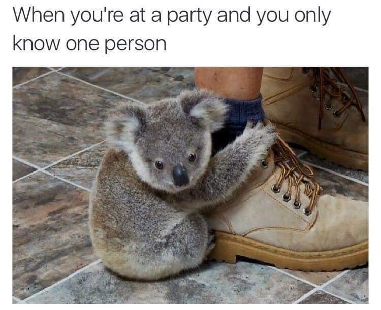 Organism - When you're at a party and you only know one person