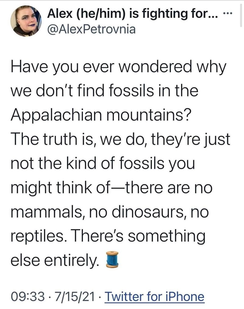 Font - Alex (he/him) is fighting for... · @AlexPetrovnia ... Have you ever wondered why we don't find fossils in the Appalachian mountains? The truth is, we do, they're just not the kind of fossils you might think of-there are no mammals, no dinosaurs, no reptiles. There's something else entirely. 09:33 · 7/15/21 · Twitter for iPhone