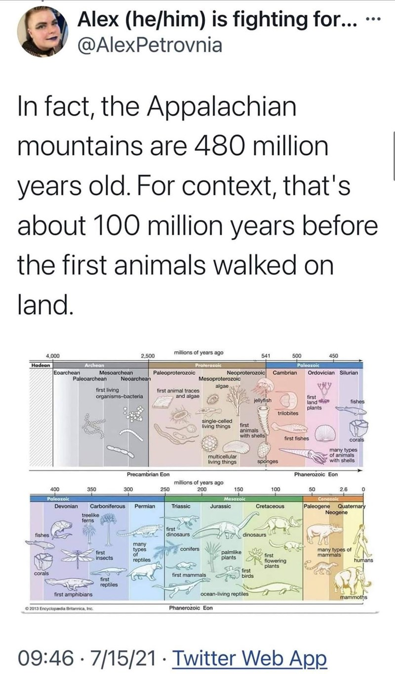 Product - Alex (he/him) is fighting for... @AlexPetrovnia ... In fact, the Appalachian mountains are 480 million years old. For context, that's about 100 million years before the first animals walked on land. millions of years ago 4,000 2,500 541 500 450 Hadean Archean Proterozoic Paleozoic Eoarchean Mesoarchean Paleoproterozoic Neoproterozoic Cambrian Ordovician Silurian Neoarchean Mesoproterozoic algae Paleoarchean first living organisms-bacteria first animal traces and algae first land plants