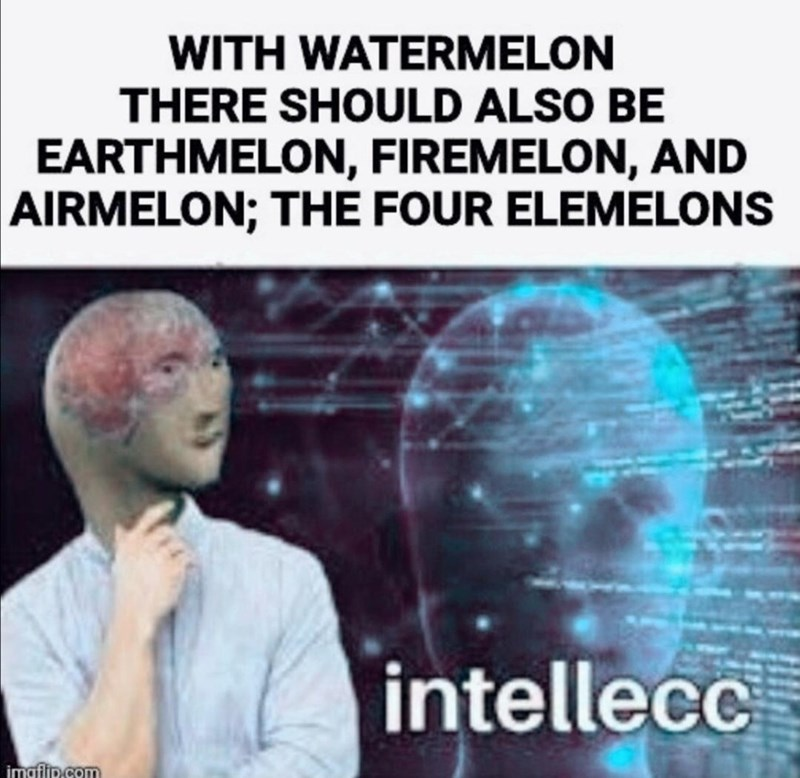 Human - WITH WATERMELON THERE SHOULD ALSO BE EARTHMELON, FIREMELON, AND AIRMELON; THE FOUR ELEMELONS intellecc imaflip.com